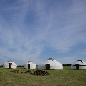 Fairlove Yurts